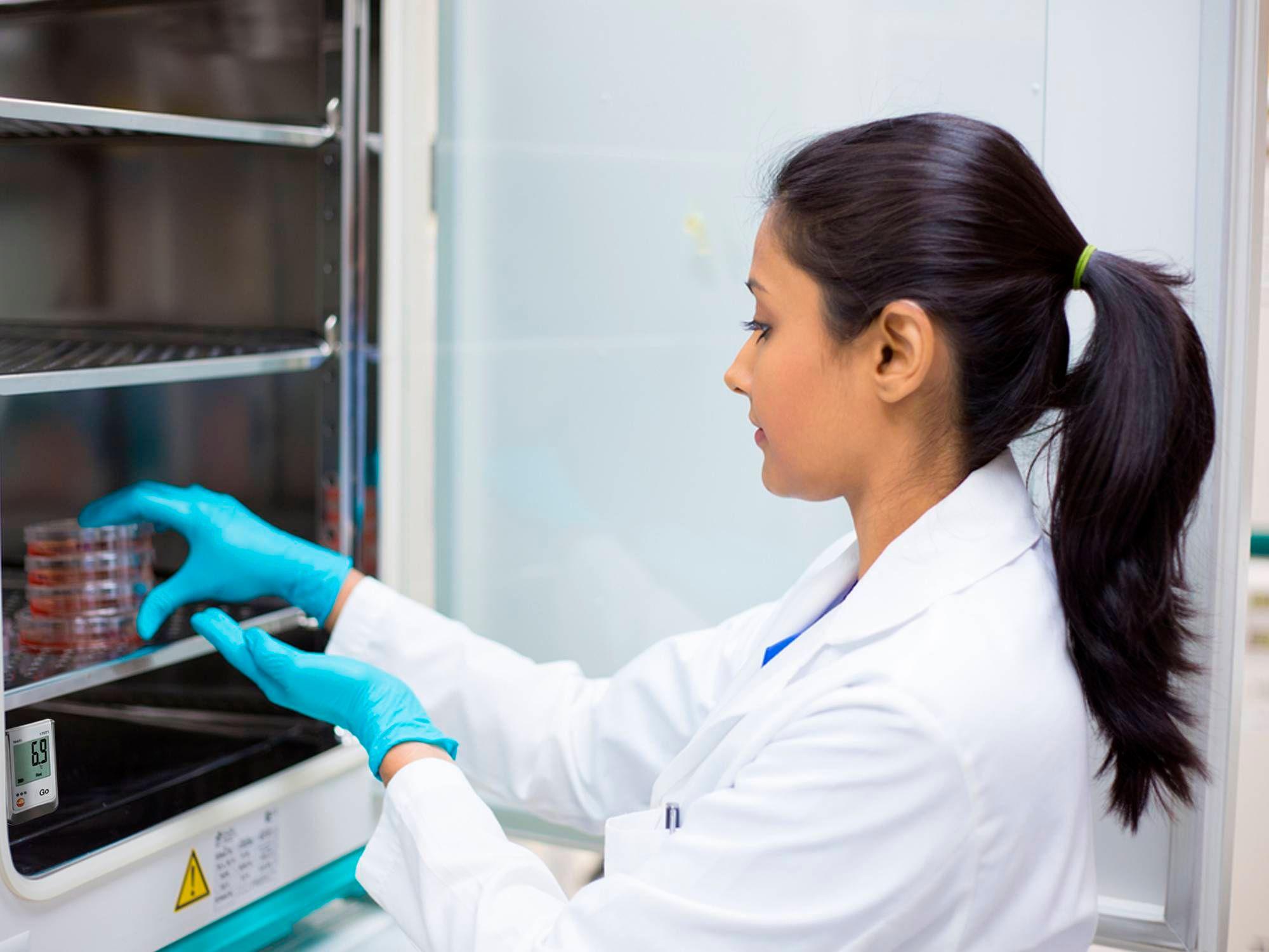 Registro de temperatura con el Testo 175 en una estufa de cultivo