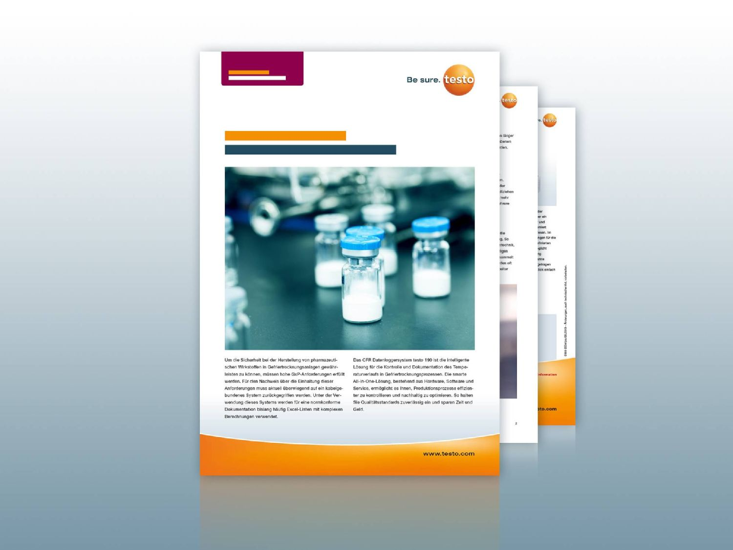Application example Freeze-drying testo 190