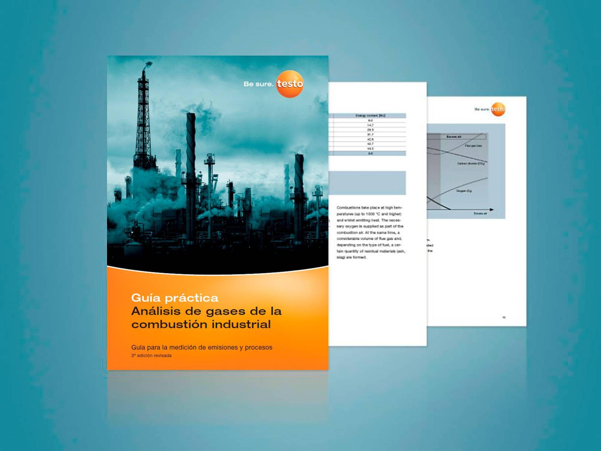 Guía de combustión industrial